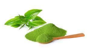 5 loại mặt nạ tuyệt vời dành cho da dầu từ trà xanh 2