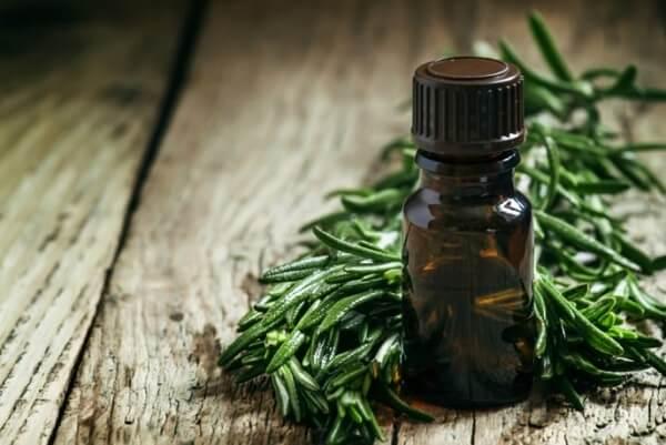 công dụng của tinh dầu tràm trà trong trị mụn
