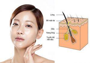 Mách bạn mặt nạ chống lão hóa cho da nhờn hiệu quả nhất 4