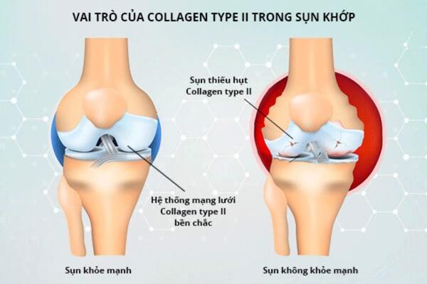 tác dụng thần kỳ của collagen đối với phụ nữ