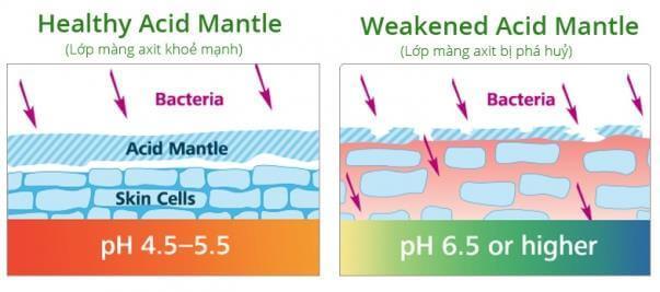 Chăm Sóc Màng Acid Mantle Là Cách Bảo Vệ Sức Khỏe Làn Da 2