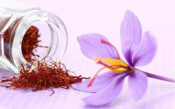 Saffron – Thần Dược Cho Làn Da